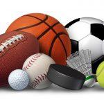 Sports League Software